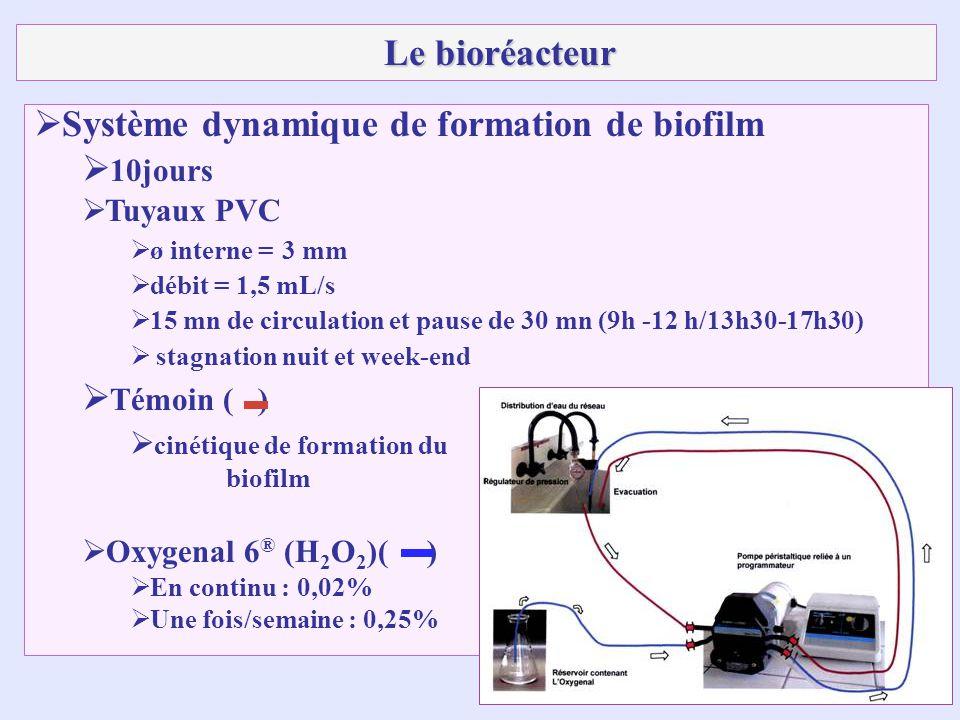 Le bioréacteur Système dynamique de formation de biofilm 10jours Tuyaux PVC ø interne = 3 mm débit = 1,5 mL/s 15 mn de circulation et pause de 30 mn (9h -12 h/13h30-17h30) stagnation nuit et week-end Témoin ( ) cinétique de formation du biofilm Oxygenal 6 ® (H 2 O 2 )( ) En continu : 0,02% Une fois/semaine : 0,25%