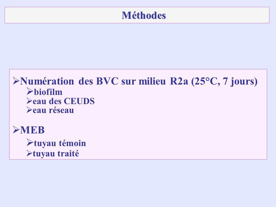 Numération des BVC sur milieu R2a (25°C, 7 jours) biofilm eau des CEUDS eau réseau MEB tuyau témoin tuyau traité Méthodes