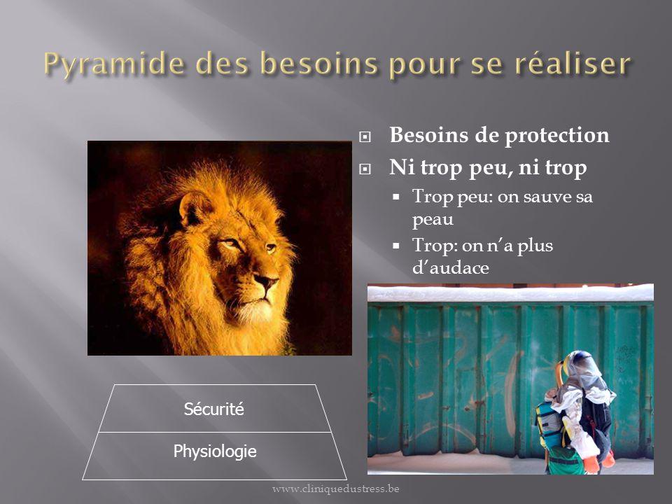 Besoins de protection Ni trop peu, ni trop Trop peu: on sauve sa peau Trop: on na plus daudace Physiologie Sécurité www.cliniquedustress.be