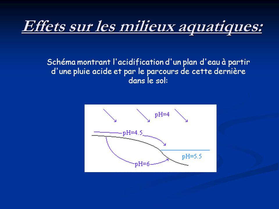 Schéma montrant l'acidification d'un plan d'eau à partir d'une pluie acide et par le parcours de cette dernière dans le sol: Effets sur les milieux aq
