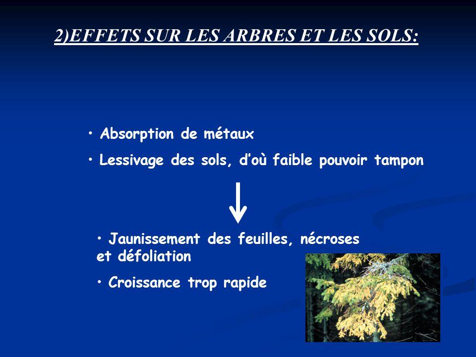 2)EFFETS SUR LES ARBRES ET LES SOLS: Absorption de métaux Lessivage des sols, doù faible pouvoir tampon Jaunissement des feuilles, nécroses et défolia
