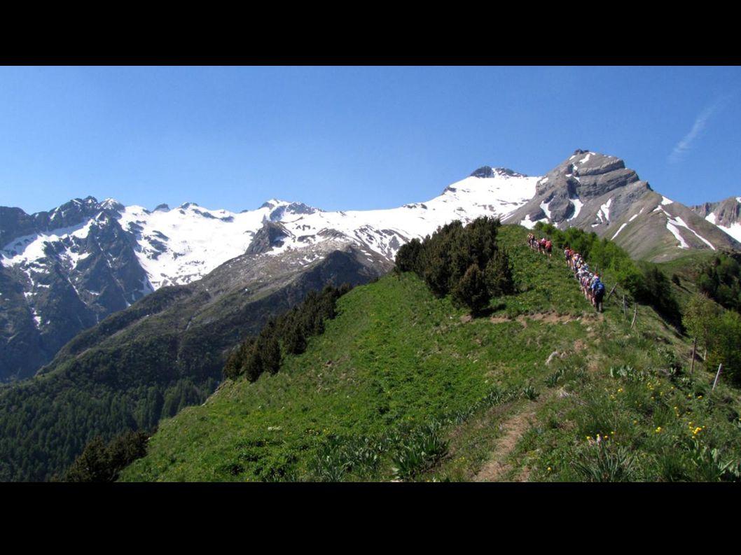Superbe vue de la Croix, en bas le village de Villard Reymond à gauche et Bourg d'Oisans dans la vallée à droite