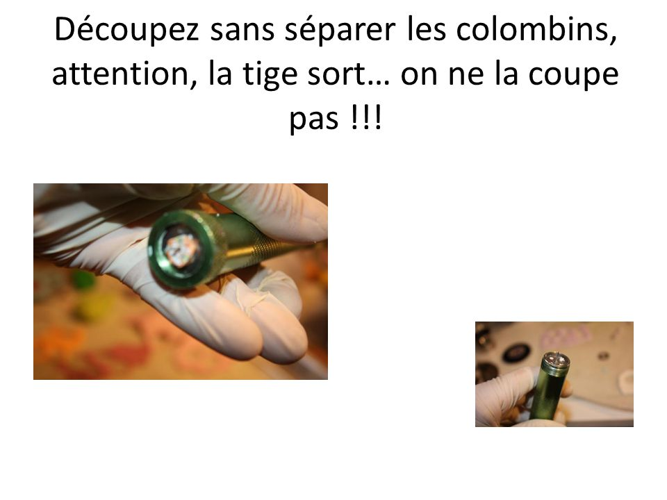 Découpez sans séparer les colombins, attention, la tige sort… on ne la coupe pas !!!