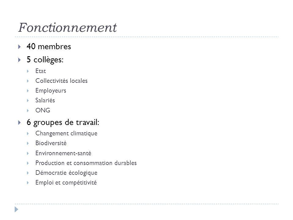 Fonctionnement 40 membres 5 collèges: Etat Collectivités locales Employeurs Salariés ONG 6 groupes de travail: Changement climatique Biodiversité Environnement-santé Production et consommation durables Démocratie écologique Emploi et compétitivité