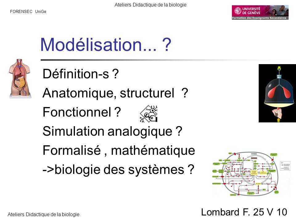 FORENSEC UniGe Ateliers Didactique de la biologie Lombard F. 25 V 10 Modélisation... ? Définition-s ? Anatomique, structurel ? Fonctionnel ? Simulatio