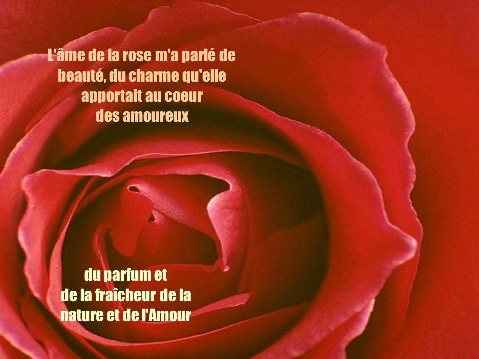 L'âme de la rose m'a parlé de beauté, du charme qu'elle apportait au coeur des amoureux du parfum et de la fraîcheur de la nature et de l'Amour