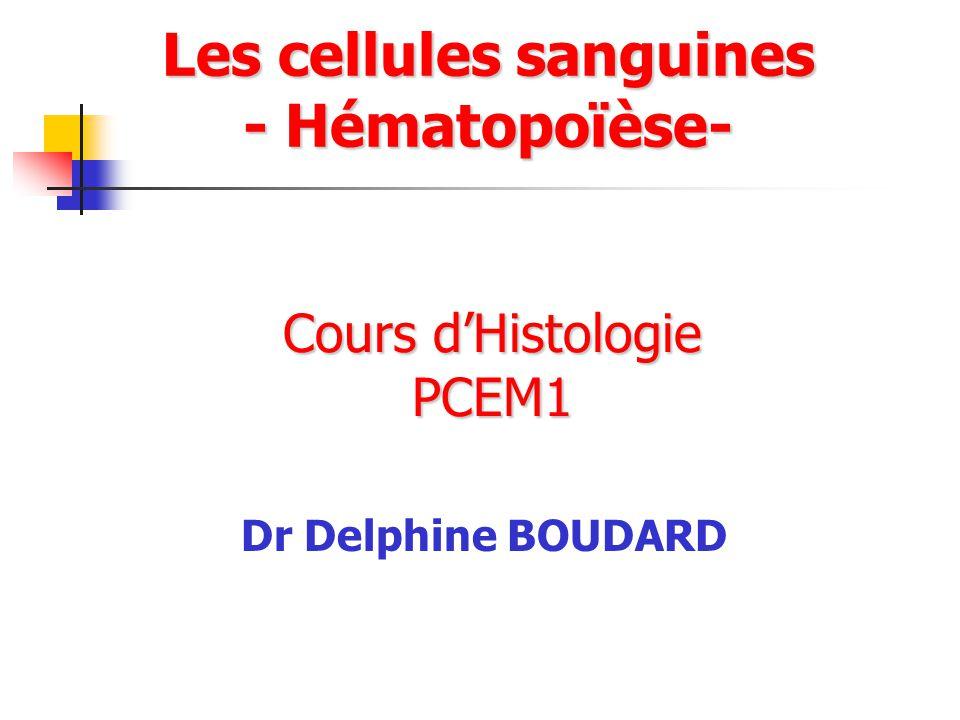 Cours dHistologie PCEM1 Dr Delphine BOUDARD Les cellules sanguines - Hématopoïèse-