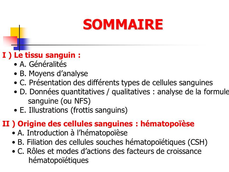 SOMMAIRE I ) Le tissu sanguin : A. Généralités B. Moyens danalyse C. Présentation des différents types de cellules sanguines D. Données quantitatives