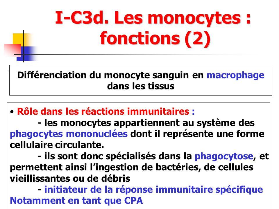 I-C3d. Les monocytes : fonctions (2) Différenciation du monocyte sanguin en macrophage dans les tissus Rôle dans les réactions immunitaires : - les mo