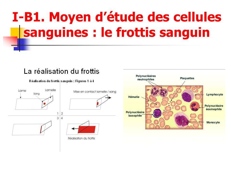 I-B1. Moyen détude des cellules sanguines : le frottis sanguin