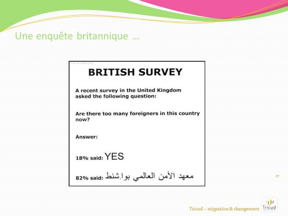27 Une enquête britannique … Tricud – migration & changement