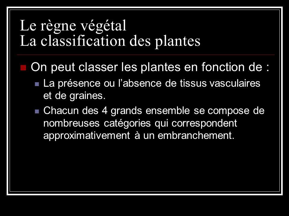 Le règne végétal La classification des plantes On peut classer les plantes en fonction de : La présence ou labsence de tissus vasculaires et de graines.