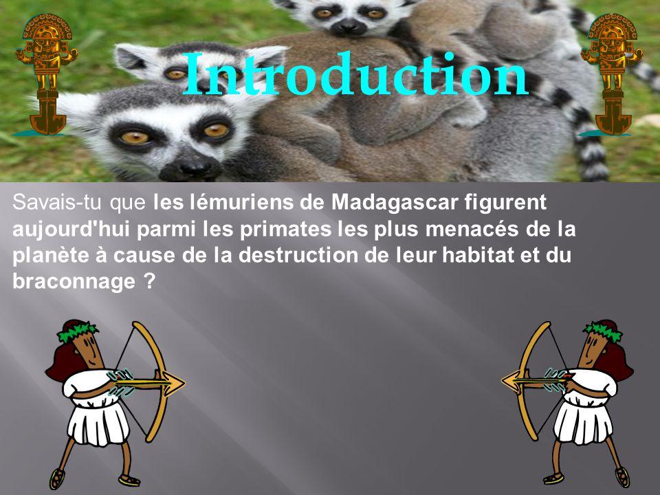 Les lémuriens sont un groupe de primates que lon ne trouve que sur lîle de Madagascar.