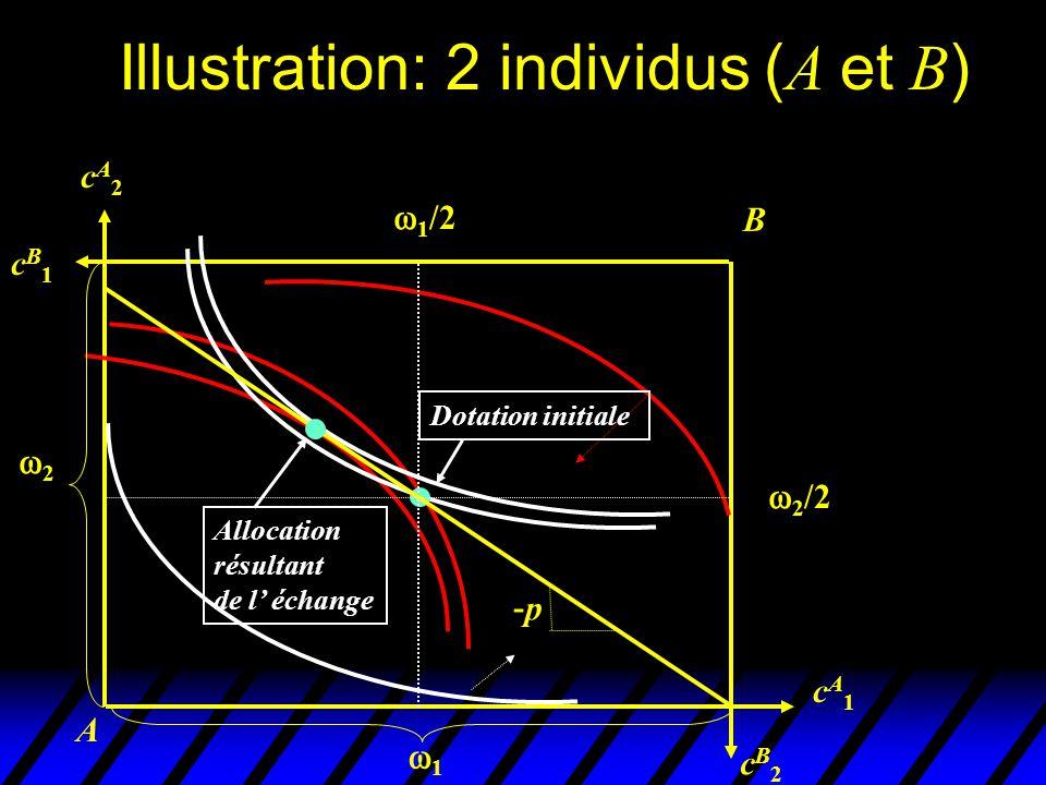 Illustration: 2 individus ( A et B ) A B cB2cB2 cA1cA1 cA2cA2 cB1cB1 Dotation initiale 2 1 Allocation résultant de l échange 1 /2 2 /2 -p-p