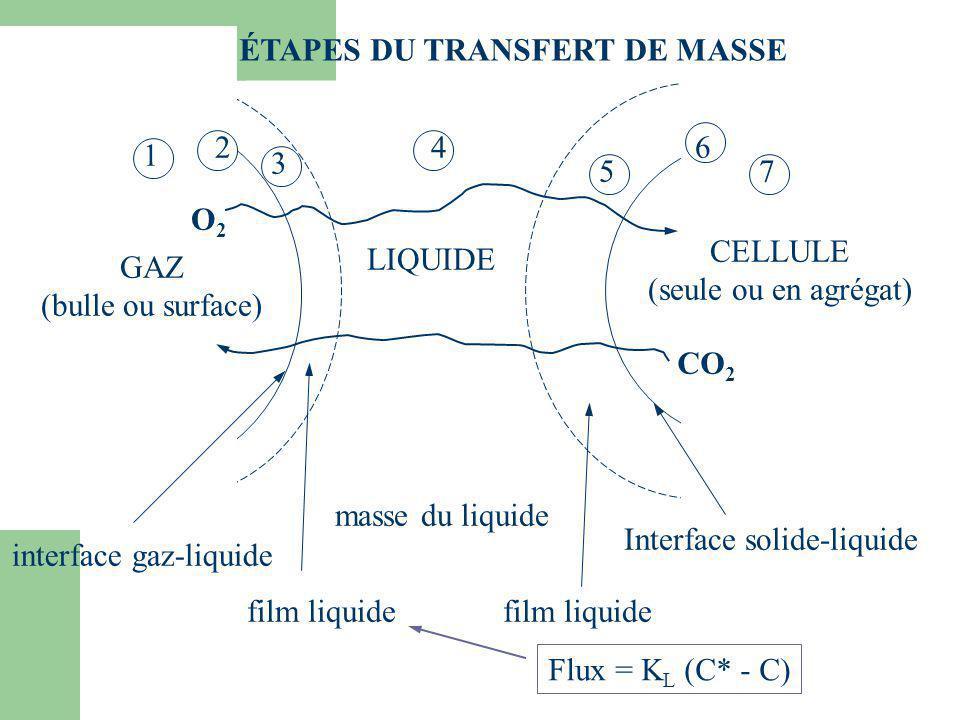 LES ÉTAPES DU TRANSFERT DE MASSE LIQUIDE interface gaz-liquide film liquide masse du liquide film liquide Interface solide-liquide CELLULE (seule ou e