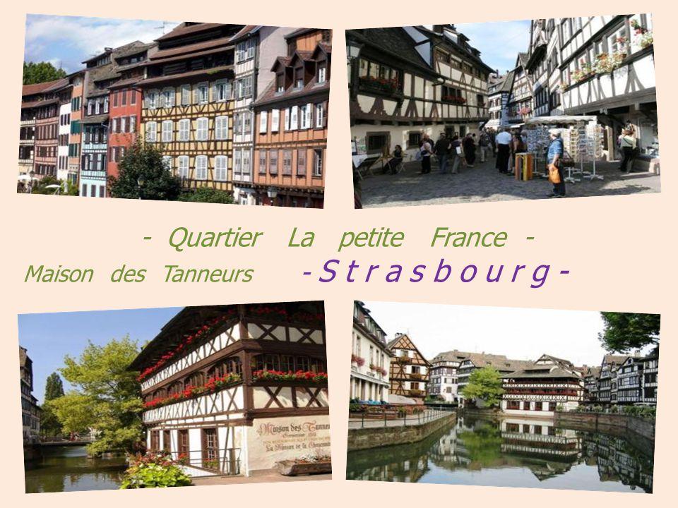 Bibliothèque nationale Chambre de commerce et municipale et de lindustrie Strasbourg Fontaine Janus réalisée pour les 2000 ans de la ville en 1988