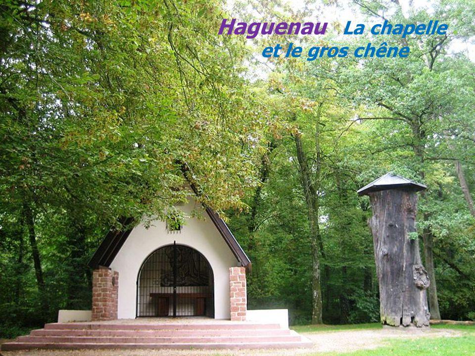 H a g u e n a u La porte des pêcheurs. Le musée historique.. La porte de Wissembourg