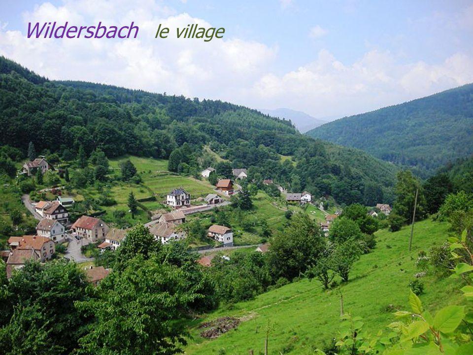 Schirmeck vue sur la commune