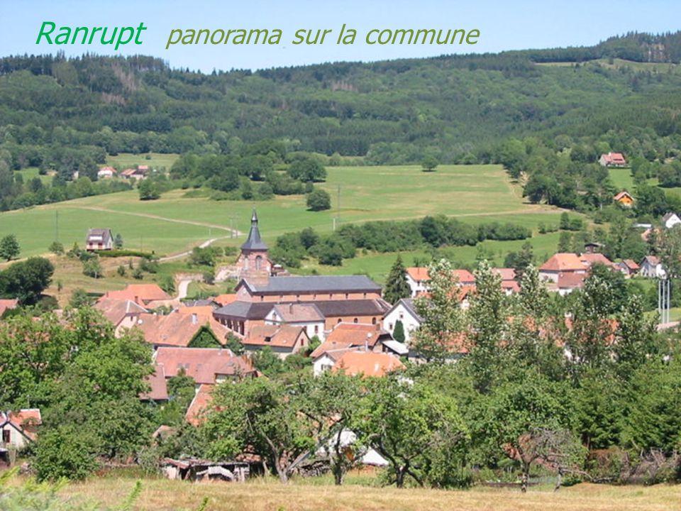Colroy-la-Roche le village