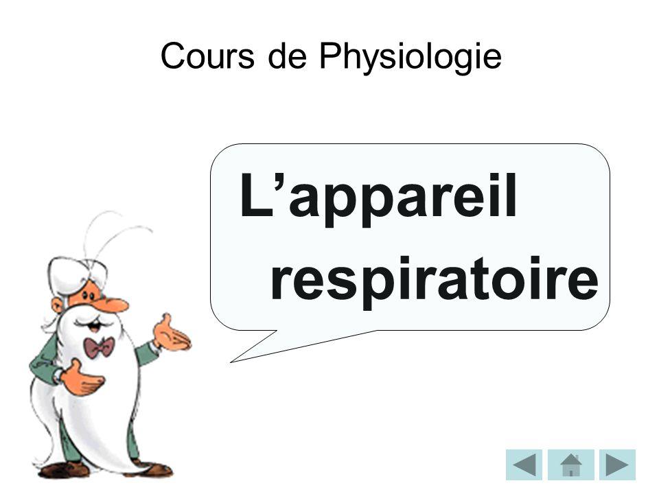 Cours de Physiologie Lappareil respiratoire