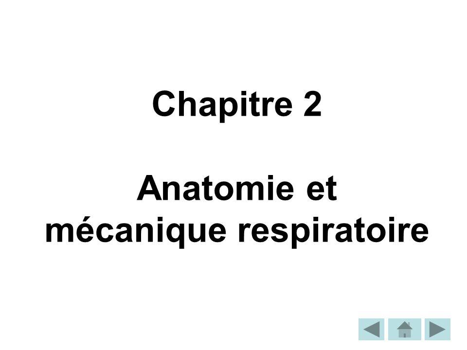 Chapitre 2 Anatomie et mécanique respiratoire
