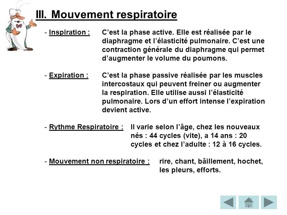 III.Mouvement respiratoire - Inspiration : Cest la phase active.