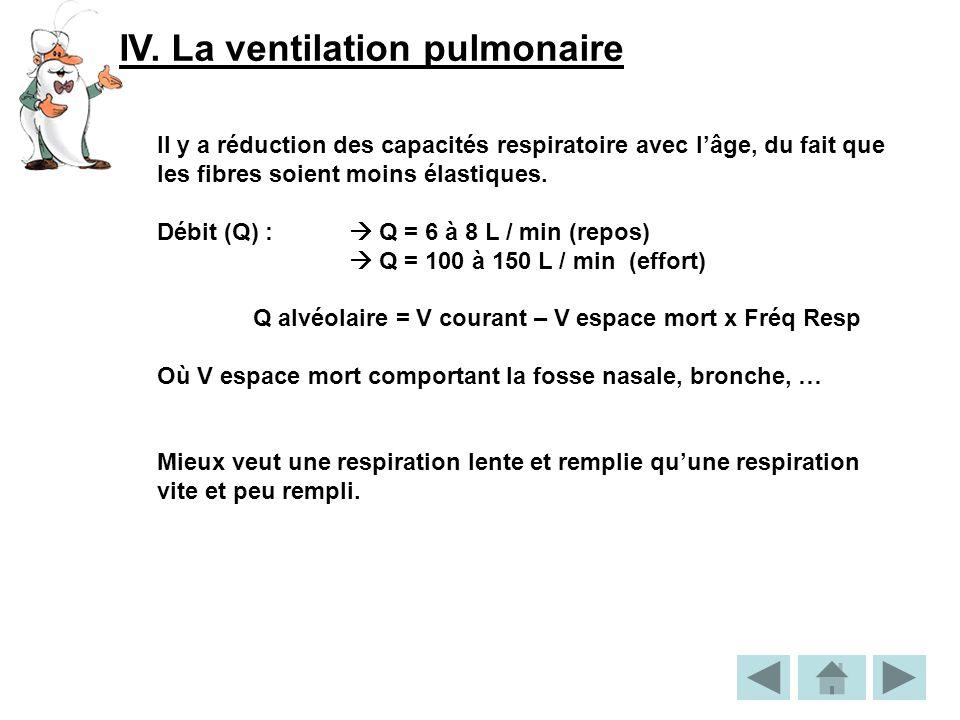 IV. La ventilation pulmonaire Il y a réduction des capacités respiratoire avec lâge, du fait que les fibres soient moins élastiques. Débit (Q) : Q = 6