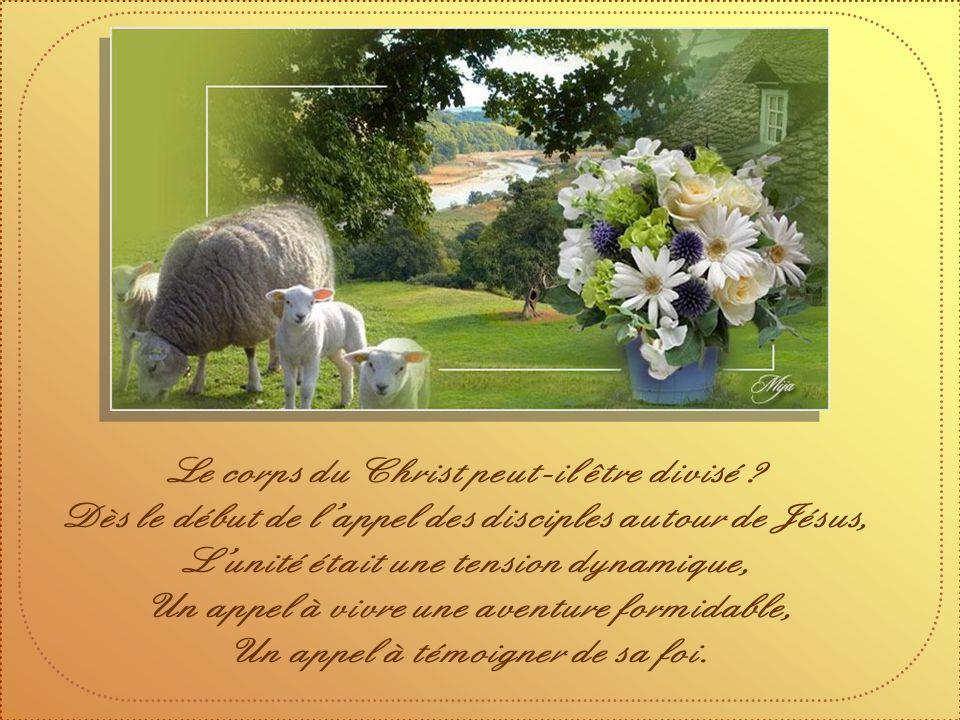 Pour avoir la force de donner son témoignage ; Pour servir les autres à travers nos gestes ; Pour apporter le réconfort ;