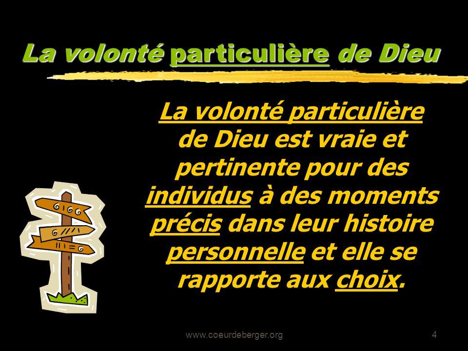 www.coeurdeberger.org25 FAIRE sa volonté : Problèmes...