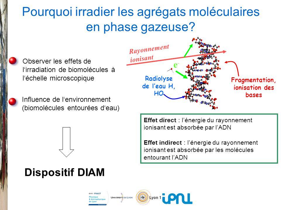 Rayonnement ionisant e-e- Radiolyse de leau H, HO Fragmentation, ionisation des bases Observer les effets de lirradiation de biomolécules à léchelle microscopique Influence de lenvironnement (biomolécules entourées deau) Effet direct : lénergie du rayonnement ionisant est absorbée par lADN Effet indirect : lénergie du rayonnement ionisant est absorbée par les molécules entourant lADN Pourquoi irradier les agrégats moléculaires en phase gazeuse.