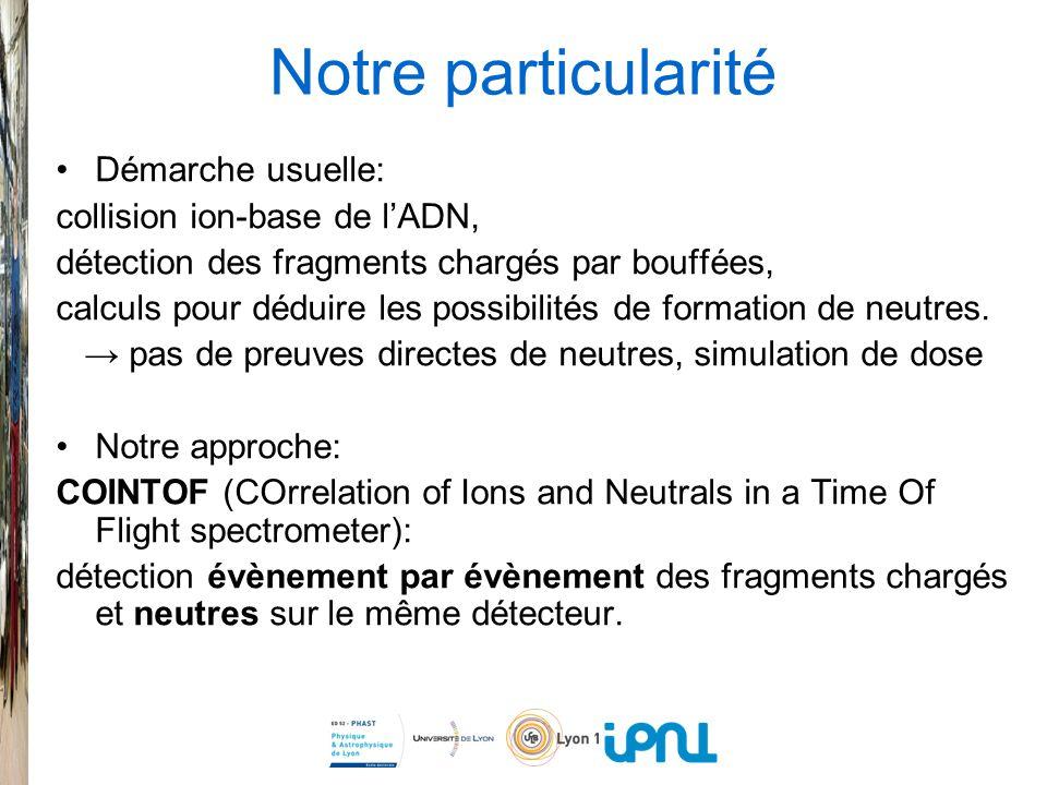 Notre particularité Démarche usuelle: collision ion-base de lADN, détection des fragments chargés par bouffées, calculs pour déduire les possibilités de formation de neutres.