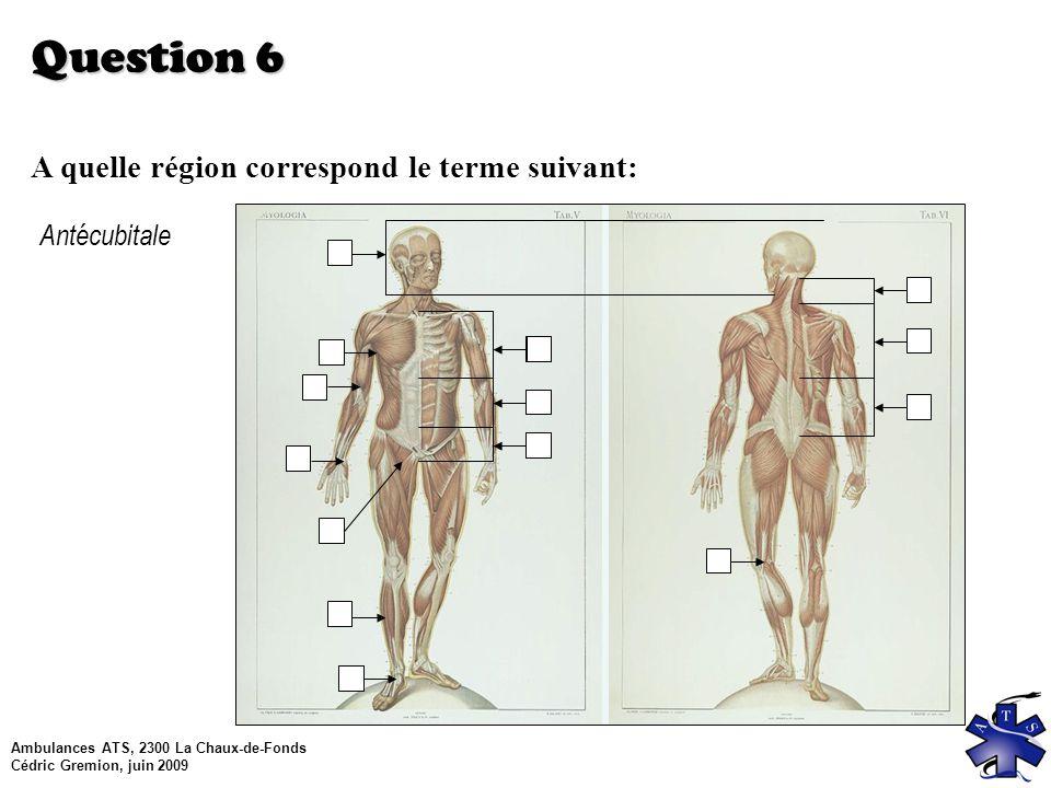 Ambulances ATS, 2300 La Chaux-de-Fonds Cédric Gremion, juin 2009 Question 6 A quelle région correspond le terme suivant: Antécubitale