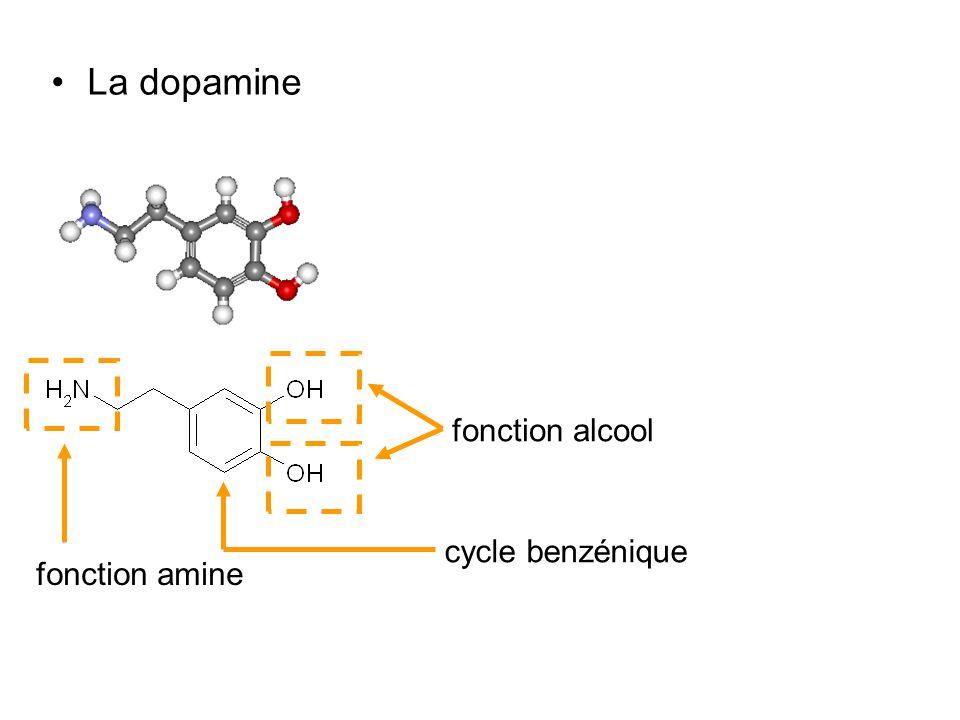 La dopamine fonction amine fonction alcool cycle benzénique