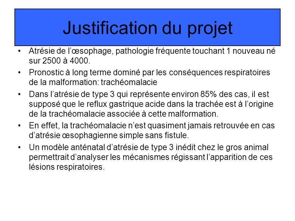 Justification du projet Atrésie de lœsophage, pathologie fréquente touchant 1 nouveau né sur 2500 à 4000. Pronostic à long terme dominé par les conséq