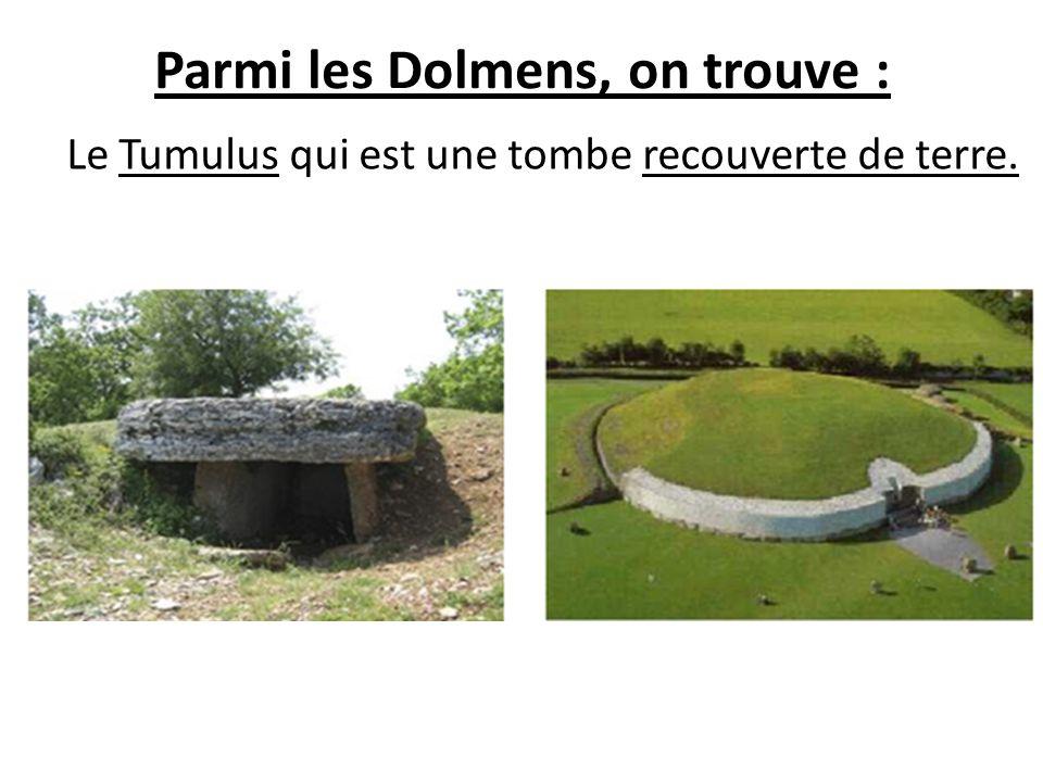 Parmi les Dolmens, on trouve : Le Tumulus qui est une tombe recouverte de terre.