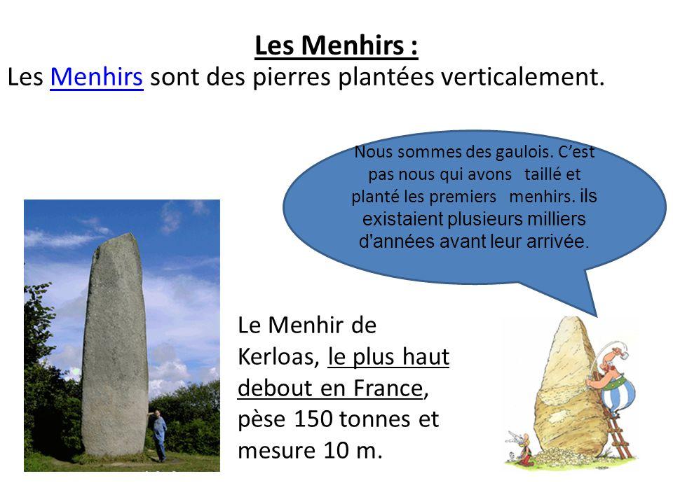Les Menhirs : Les Menhirs sont des pierres plantées verticalement.Menhirs Nous sommes des gaulois. Cest pas nous qui avons taillé et planté les premie