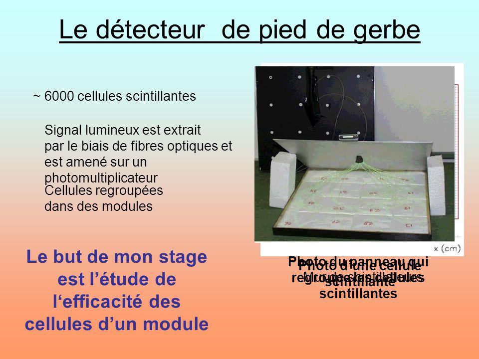 Photo dune cellule scintillante Signal lumineux est extrait par le biais de fibres optiques et est amené sur un photomultiplicateur Mur de scintillate