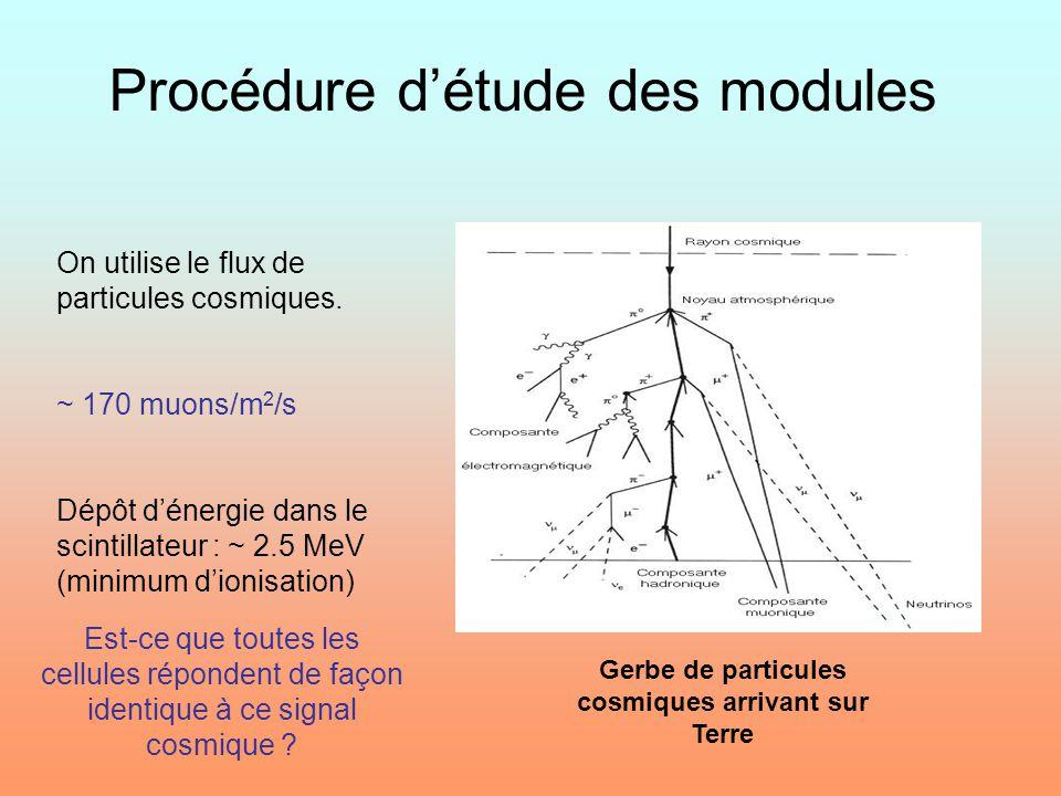 Procédure détude des modules Gerbe de particules cosmiques arrivant sur Terre On utilise le flux de particules cosmiques. ~ 170 muons/m 2 /s Dépôt dén