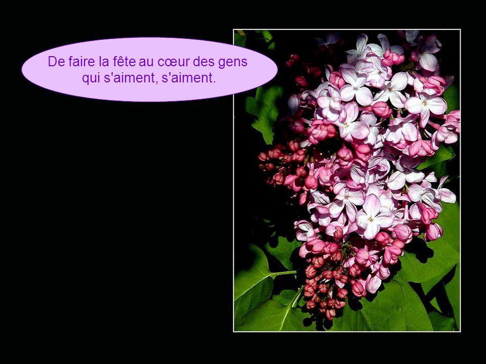 Mais tous les lilas Tous les lilas de mai N'en finiront N'en finiront jamais
