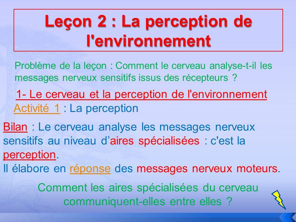 Problème de la leçon : Comment le cerveau analyse-t-il les messages nerveux sensitifs issus des récepteurs ? 1- Le cerveau et la perception de l'envir