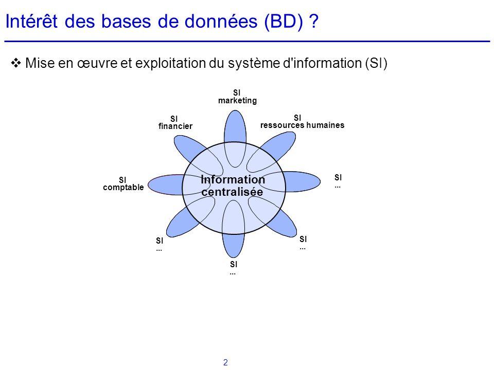 2 Mise en œuvre et exploitation du système d'information (SI) Nécessité pour le gestionnaire de : savoir accéder à linformation centralisée en utilisa