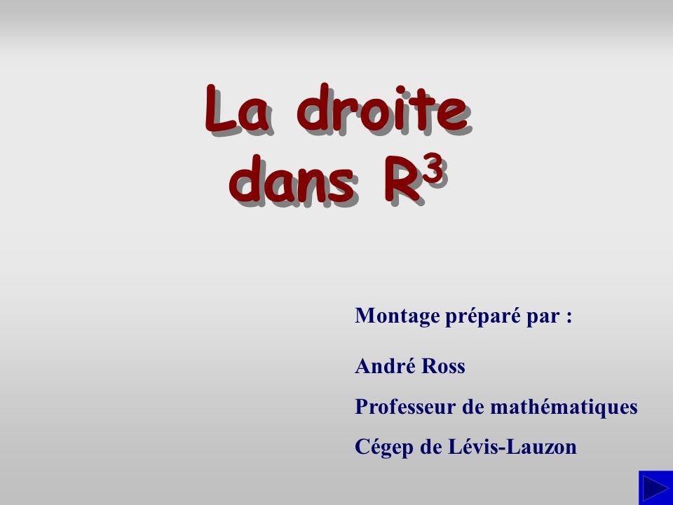Montage préparé par : André Ross Professeur de mathématiques Cégep de Lévis-Lauzon La droite dans R 3 La droite dans R3R3
