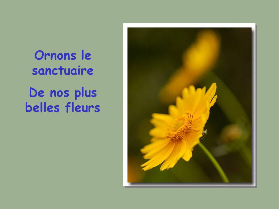 Ornons le sanctuaire De nos plus belles fleurs