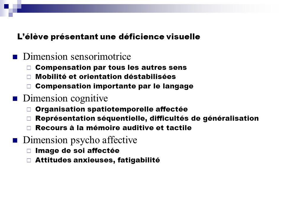 Lélève présentant une déficience visuelle Dimension sensorimotrice Compensation par tous les autres sens Mobilité et orientation déstabilisées Compens