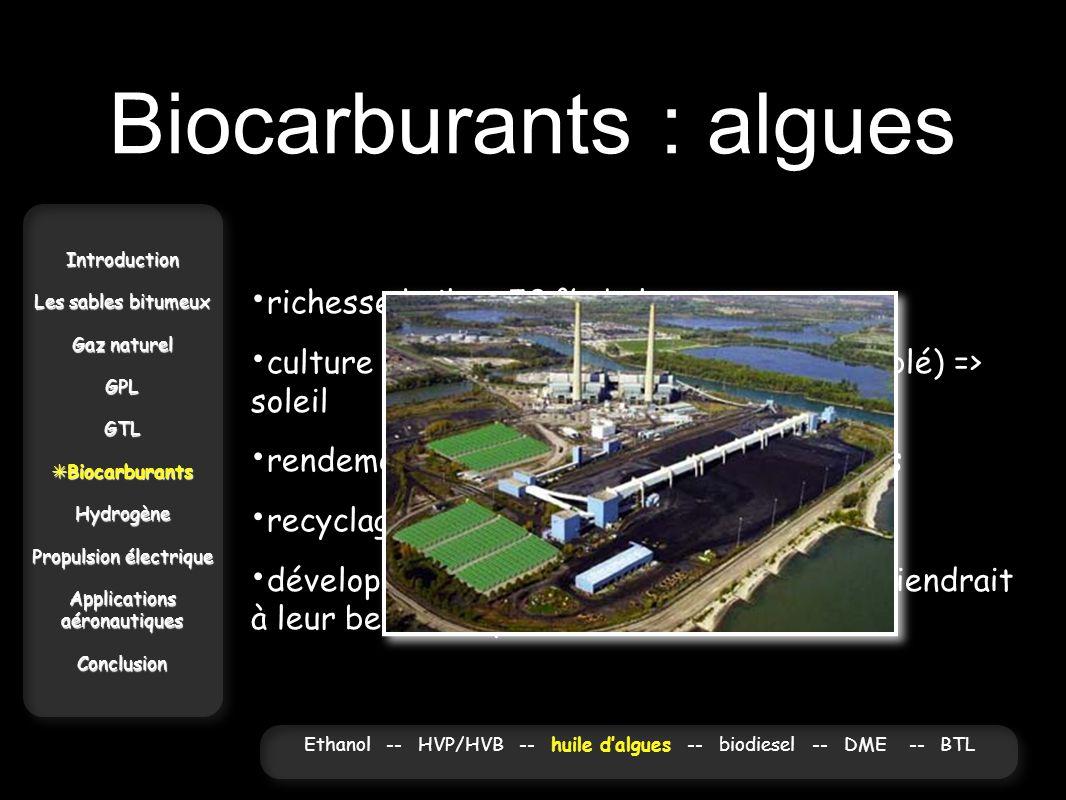 Biocarburants : algues Introduction Les sables bitumeux Gaz naturel GPLGTL Biocarburants BiocarburantsHydrogène Propulsion électrique Applications aér