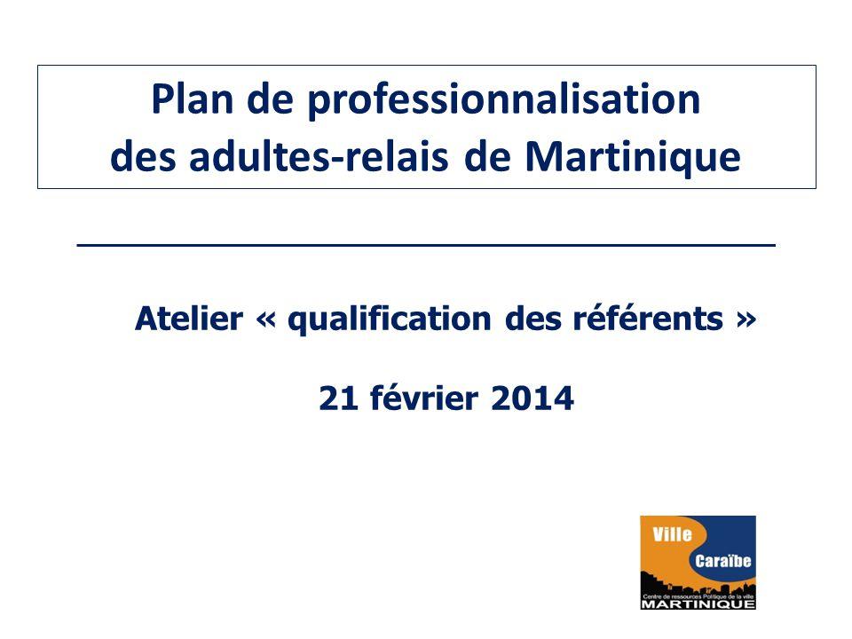 Plan de professionnalisation des adultes-relais de Martinique Atelier « qualification des référents » 21 février 2014