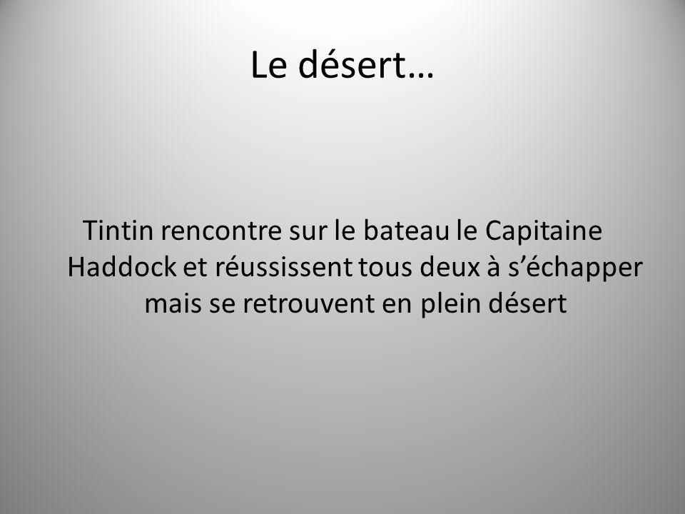 Le désert… Tintin rencontre sur le bateau le Capitaine Haddock et réussissent tous deux à séchapper mais se retrouvent en plein désert