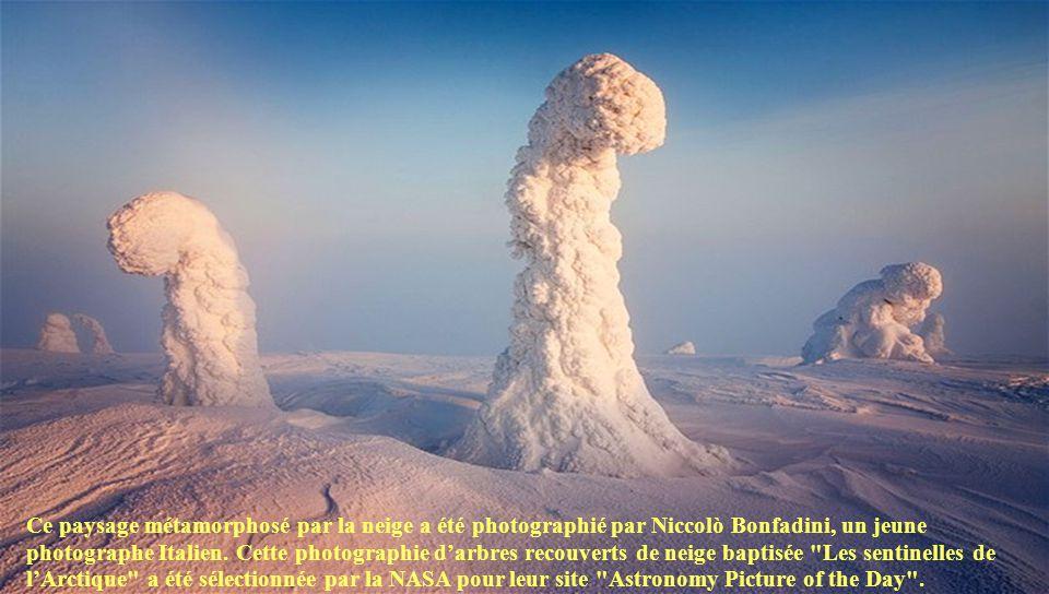 Les Sentinelles de L'arctique Un Création de DANIEL.S Manuel