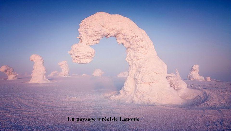 Ce paysage métamorphosé par la neige a été photographié par Niccolò Bonfadini, un jeune photographe Italien. Cette photographie darbres recouverts de