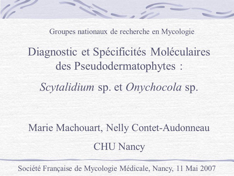 Groupes nationaux de recherche en Mycologie Société Française de Mycologie Médicale, Nancy, 11 Mai 2007 Diagnostic et Spécificités Moléculaires des Ps